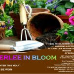 Peterlee in Bloom